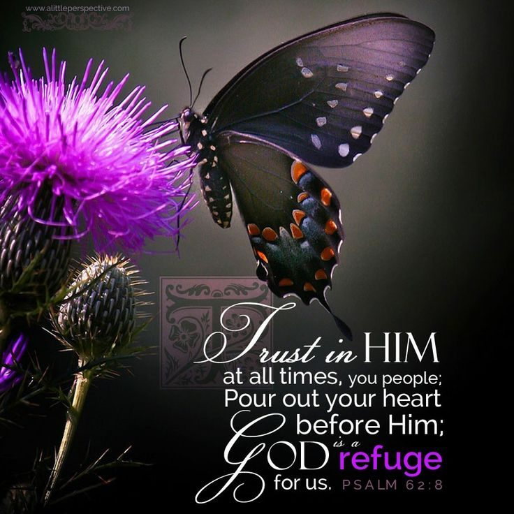 Psalm62.8-trust-in-Him-at-all-times-1.jpg